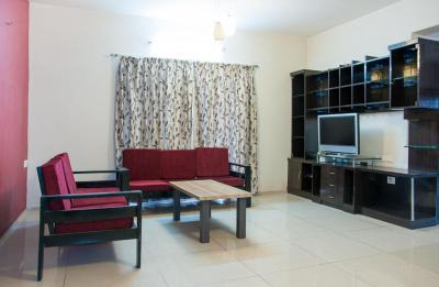 Living Room Image of PG 4643273 Bellandur in Bellandur
