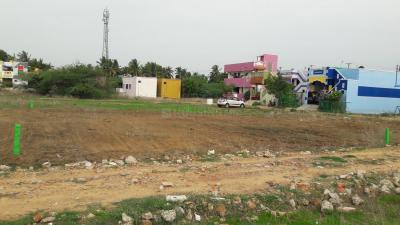 Gallery Cover Image of  Sq.ft Residential Plot for buy in Veppampattu for 1300000