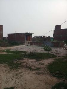 Gallery Cover Image of 360 Sq.ft Residential Plot for buy in Tughlakabad for 480000