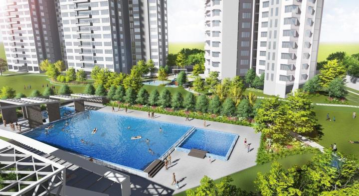 Swimming Pool Image of 1087 Sq.ft 2 BHK Apartment for rent in Powai for 54000