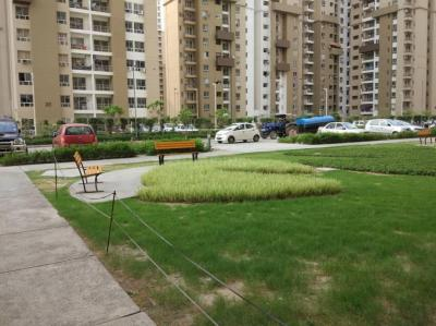 Gallery Cover Image of 2435 Sq.ft 3 BHK Apartment for buy in Sector 100 for 12662000