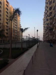 Gallery Cover Image of 1350 Sq.ft 3 BHK Apartment for buy in Bhopura for 3865901