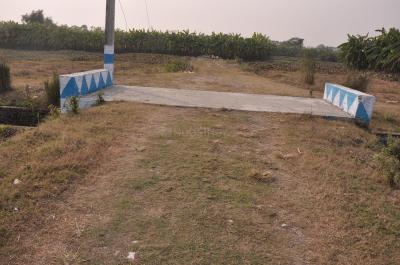 Gallery Cover Image of  Sq.ft Residential Plot for buy in Nepalgange for 720000
