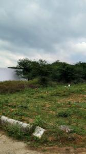 268 Sq.ft Residential Plot for Sale in Sector 57, Gurgaon