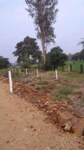 1000 Sq.ft Residential Plot for Sale in Karmeta, Jabalpur