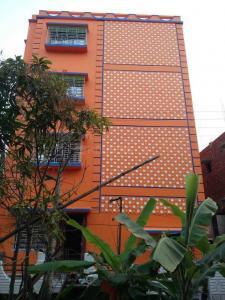 Building Image of PG 4314298 Panchpota in Panchpota
