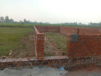 1000 Sq.ft Residential Plot for Sale in Gosainganj, Lucknow