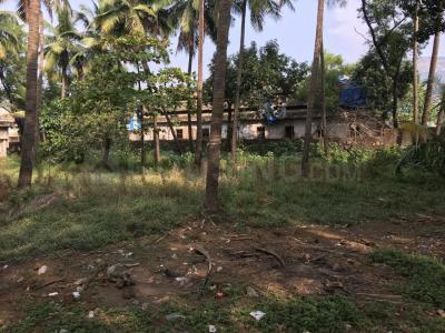 1200 Sq.ft Residential Plot for Sale in Kalkere, Bangalore