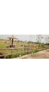 9252 Sq.ft Residential Plot for Sale in Jewar, Greater Noida