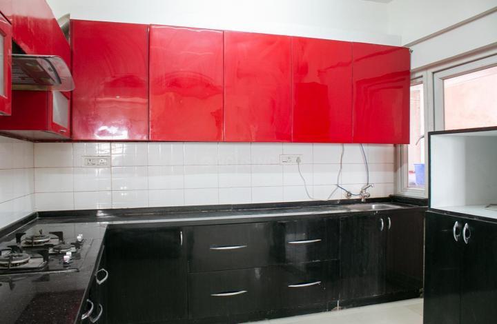 Kitchen Image of Alpine Viva Flat 1004 in Krishnarajapura