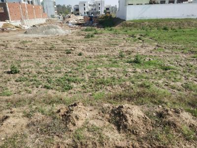 334 Sq.ft Residential Plot for Sale in Jagdishpur, Sonepat