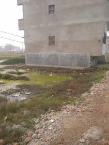 1361 Sq.ft Residential Plot for Sale in Murlichack, Patna