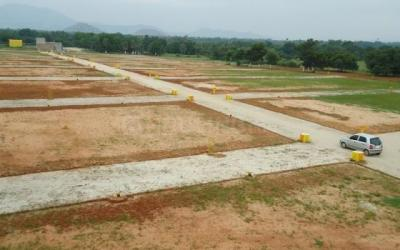 Gallery Cover Image of  Sq.ft Residential Plot for buy in Sector 9 for 27684900