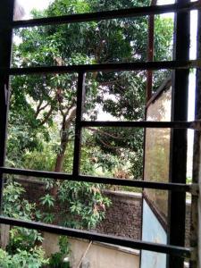 Balcony Image of Female PG Only. in Jogeshwari West