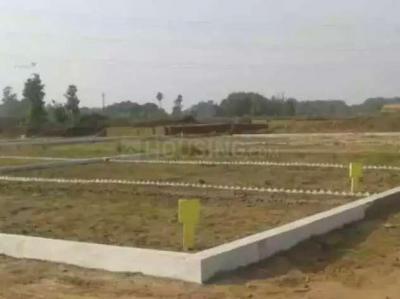 1000 Sq.ft Residential Plot for Sale in Lodipur, Patna