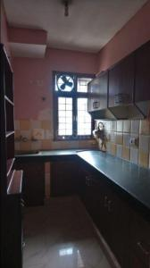 Gallery Cover Image of 1840 Sq.ft 3 BHK Apartment for rent in PI Greater Noida for 12500
