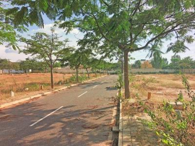 Gallery Cover Image of  Sq.ft Residential Plot for buy in Rayasandra for 7849300