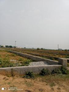 Gallery Cover Image of  Sq.ft Residential Plot for buy in Dayal Bagh Colony for 350000
