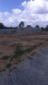 Gallery Cover Image of  Sq.ft Residential Plot for buy in Hosur for 1650000