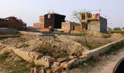 540 Sq.ft Residential Plot for Sale in Sector 137, Noida