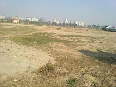 9072 Sq.ft Residential Plot for Sale in Sector 134, Noida