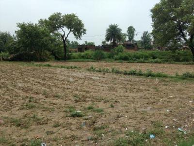 1020 Sq.ft Residential Plot for Sale in Nagina Avenue, Amritsar