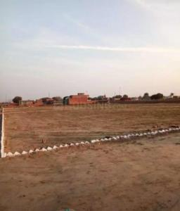 Gallery Cover Image of 100 Sq.ft Residential Plot for buy in Sector 115 for 1300000