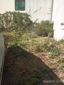 1131 Sq.ft Residential Plot for Sale in Chhota Bangarda, Indore