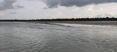 720 Sq.ft Residential Plot for Sale in Bara Pathuram, Siliguri