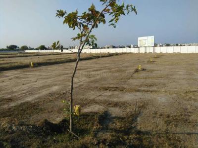 Gallery Cover Image of  Sq.ft Residential Plot for buy in Vengambakkam for 2200000