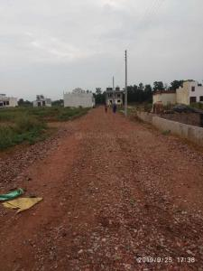 Gallery Cover Image of  Sq.ft Residential Plot for buy in Sector 67 for 1500000