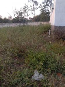 Gallery Cover Image of  Sq.ft Residential Plot for buy in Bandlaguda Jagir for 9000000