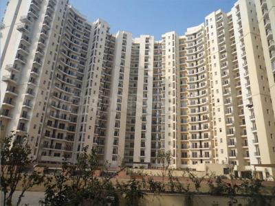 Gallery Cover Image of 1000 Sq.ft 2 BHK Apartment for rent in Chi V Greater Noida for 8500