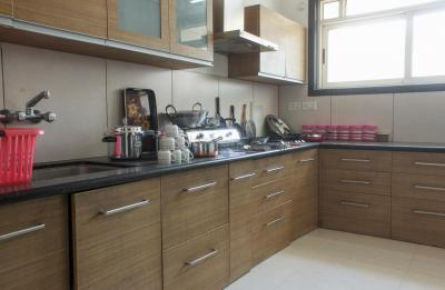 Kitchen Image of PG 4643576 Magarpatta City in Magarpatta City