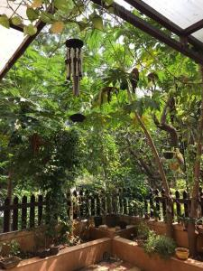 8500 Sq.ft Residential Plot for Sale in Mundhwa, Pune