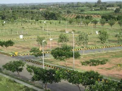 80 Sq.ft Residential Plot for Sale in Yeida, Greater Noida