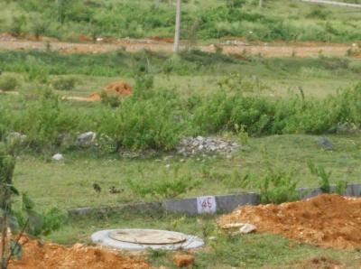 Gallery Cover Image of  Sq.ft Residential Plot for buy in Sathgalli for 6500000