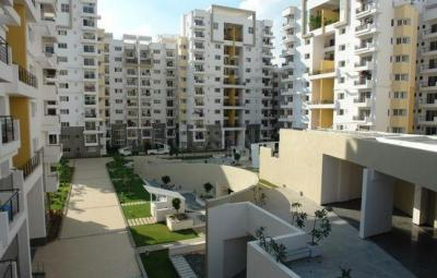 Gallery Cover Image of 1850 Sq.ft 3 BHK Apartment for rent in Bellandur for 35000