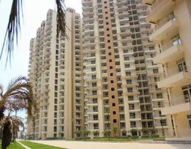 Gallery Cover Image of 995 Sq.ft 2 BHK Apartment for rent in Noida Extension for 9500