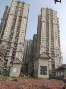 Gallery Cover Image of 1000 Sq.ft 2 BHK Independent Floor for buy in Sector 62A for 5000000