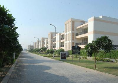 Gallery Cover Image of 1400 Sq.ft 3 BHK Apartment for rent in Sector 81 for 12500