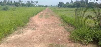 Gallery Cover Image of  Sq.ft Residential Plot for buy in Maduravoyal for 25600000