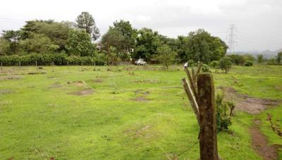 Gallery Cover Image of  Sq.ft Residential Plot for buy in Pali for 7500000