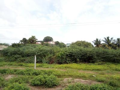Gallery Cover Image of  Sq.ft Residential Plot for buy in Kundrathur for 1800000
