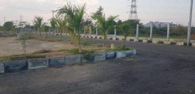 165 Sq.ft Residential Plot for Sale in Shamshabad, Hyderabad