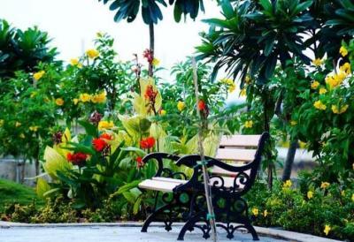 1000 Sq.ft Residential Plot for Sale in Paliya Haidar, Indore