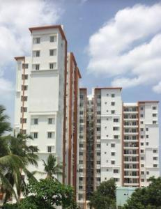 Gallery Cover Image of 708 Sq.ft 2 BHK Apartment for rent in Akshaya Tango, Thoraipakkam for 21000