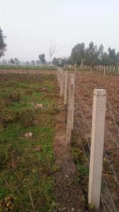 6750 Sq.ft Residential Plot for Sale in Khanpur, Pathankot