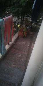 Balcony Image of Venture's PG in Malleswaram