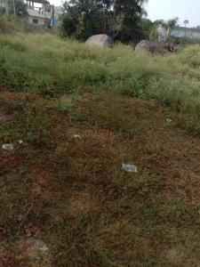 Gallery Cover Image of  Sq.ft Residential Plot for buy in Chandrayangutta for 5600000